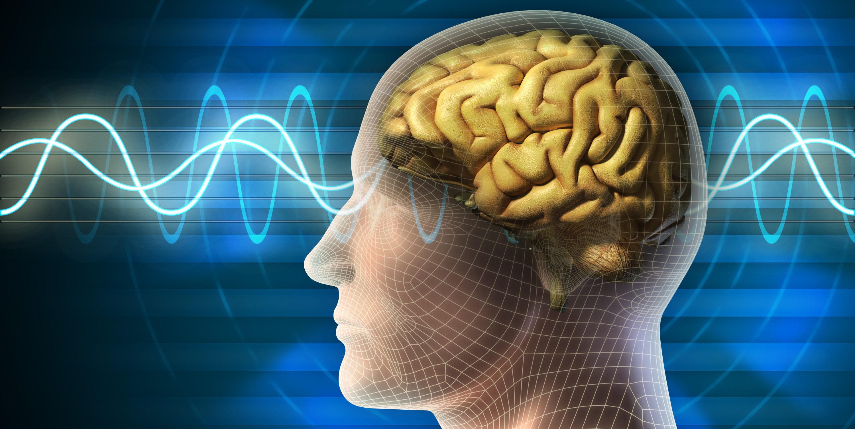 EEG Biofeedback trénink